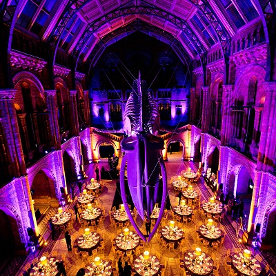 Benevolent Ball 2019 - Natural History Museum